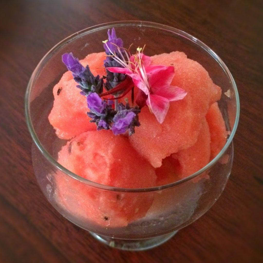 Summer Delights:   Watermelon Sorbet  :)